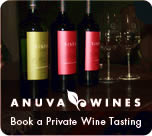 Book a wine tasting in Buenos Aires
